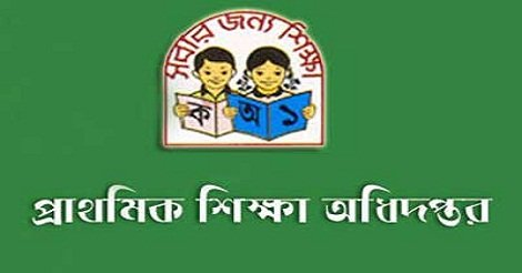 Primary Teacher Job Circular