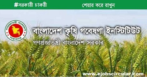 Bangladesh Agricultural Research Institute Job Circular – www.bari.gov.bd