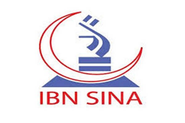 IBN SINA Pharmaceuticals Job